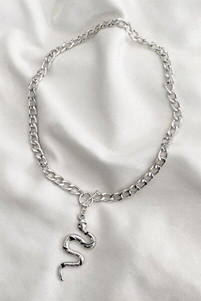 TAKIŞTIR Kadın Gümüş Renk Yılan Figürlü Zincir Kolye