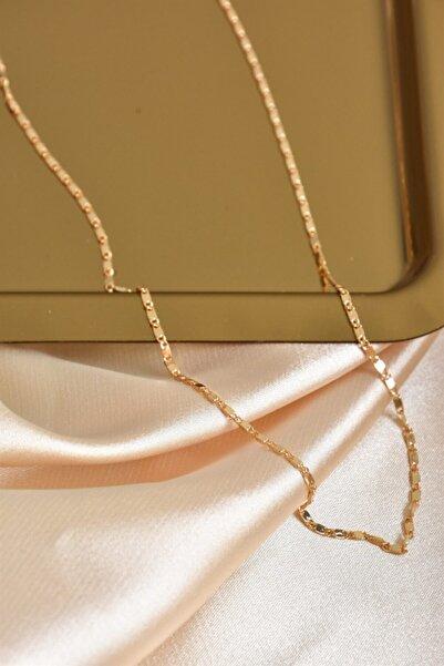 Fox Shoes Kadın İnce Zincir Altın Kolye Ka021129