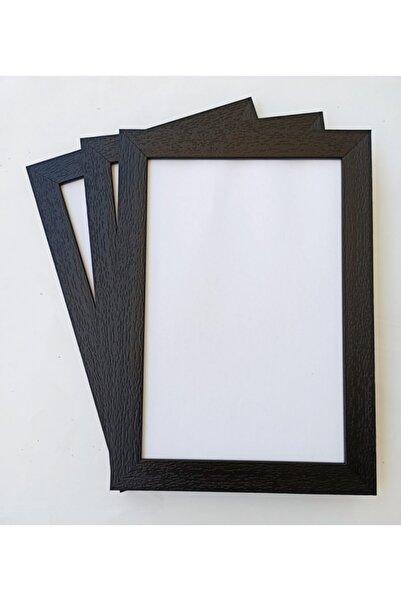 Moda Meral Roma 30x40 Fotoğraf Evrak Poster Resimlik Siyah Çerçeve 3'lü Paket Mmrl256187