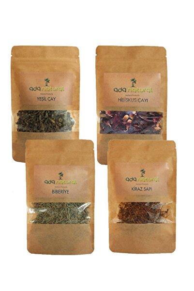 Biogreenlife Detoks Çayı 4 Lü Set :yeşil Çay, Hibiskus, Kiraz Sapı, Biberiye