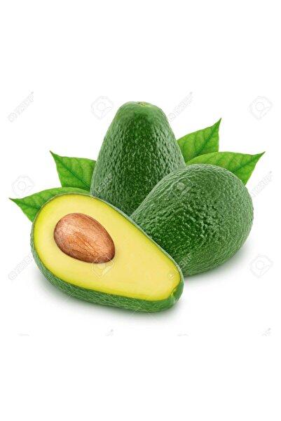 tropik online 10 Adet Avokado 250 gram Üstü