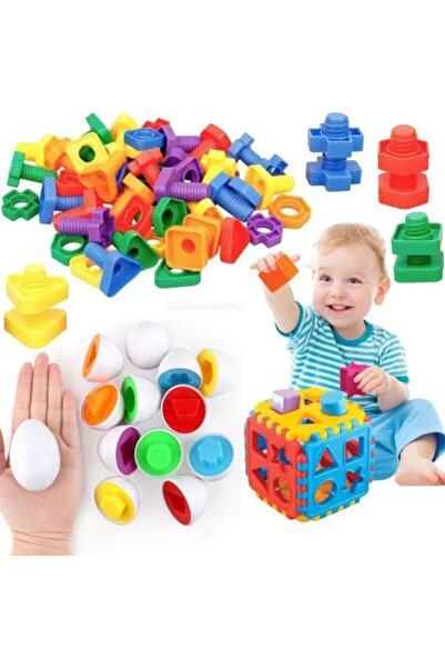 Depomiks Avm Bul Tak Yumurta Eşleme Oyunu + Geometrik Somun Vida Çevirme+ Bultak Puzzle Eğitici Zeka Geliştirici