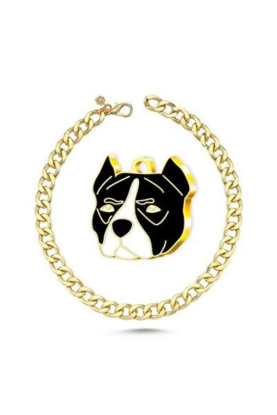 Thepassage Altın Kaplama Pitbull Köpek Künyesi (siyah)+kedi Köpek Kolyesi - Gold 45cm
