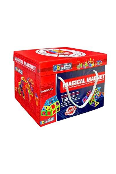 Magical Magnet , Mıknatıslı ,manyetik 3 Boyutlu Yapı Ve Tasarım Lego Eğitim Seti, 100 Parça