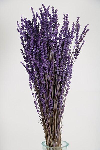 Yapay Çiçek Deposu Şoklanmış Dökülmeye Dayanıklı Gerçek Lavanta Demeti Mor (100 gr)