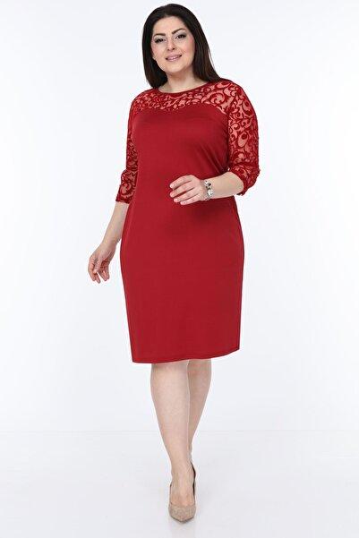 Moday Kadın Bordo Floklu Elbise 26c-1030