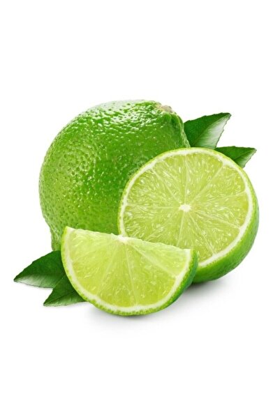 TaptazeCo Lime Yeşil Limon (misket Limon) 1 Kg Tpzt6