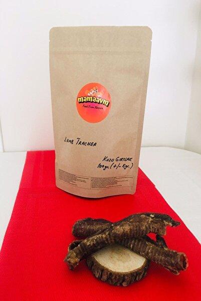MAMA AVM Kurutulmuş Kuzu Gırtlak Köpek Çiğneme Ve Ödül Maması Doğal Köpek Maması Lamb Trachea Dog Food