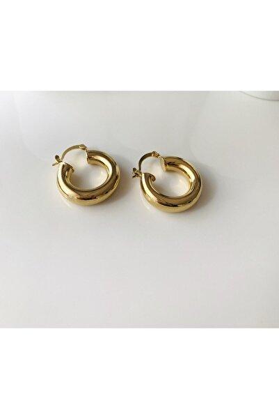 LİLY TAKI VE AKSESUAR ÜRÜNLERİ Halka Model Gold Renk Orta Boy Bayan Çelik Küpe