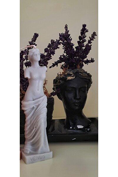 Flower Dekoratif Venüs Mum