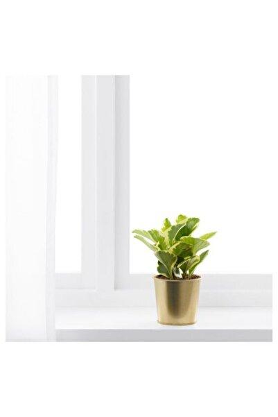 IKEA Daıdaı Galvanizli Çelik Saksı Bahçe Bitki 9 cm Pirinç Rengi