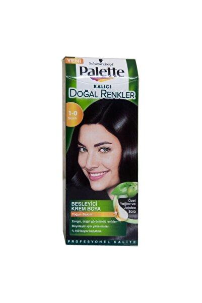 Palette Natural Saç Boyası 1-0 Siyah