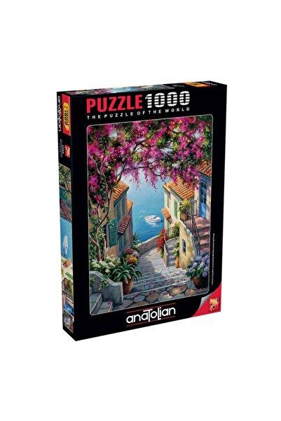 Anatolian Puzzle Kıyı Merdivenleri 1000 Parça Puzzle 1088