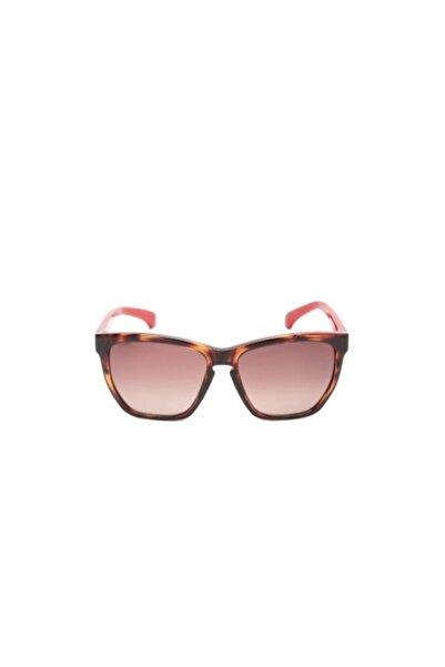 Calvin Klein Jeans Ckj757s 239 Kadın Güneş Gözlüğü
