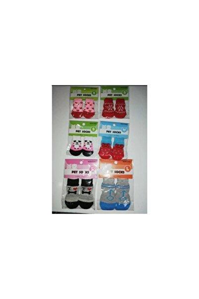 Bayraktar Kedi Ve Ufak Irk Köpek Çorapları 3,5x9 Cm 4 Lü