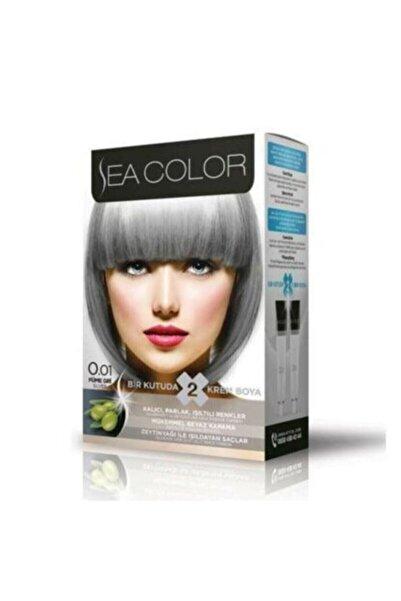 Sea Color Saç Boyası Füme Gri 0.01
