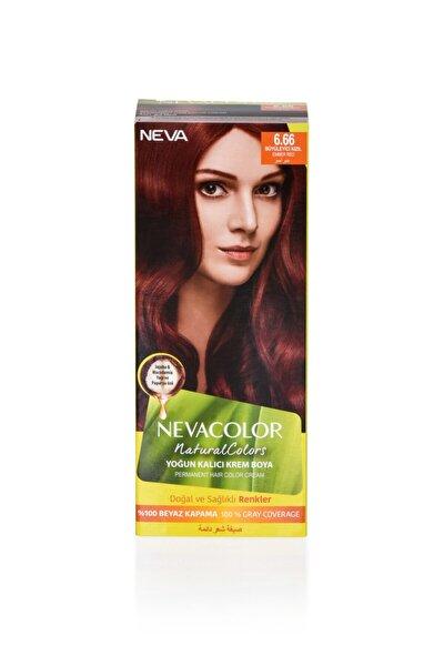 Neva Color Natural Colors 6.66 Büyüleyici Kızıl - Kalıcı Krem Saç Boyası Seti 8698636612319