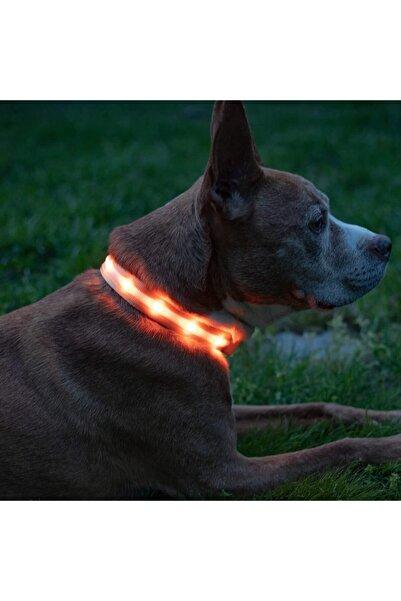 VOVOSHOP Led Işıklı Ayarlanabilir Köpek Tasması Turuncu