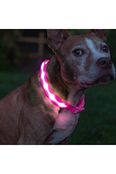 VOVOSHOP Led Işıklı Ayarlanabilir Köpek Tasması Pembe