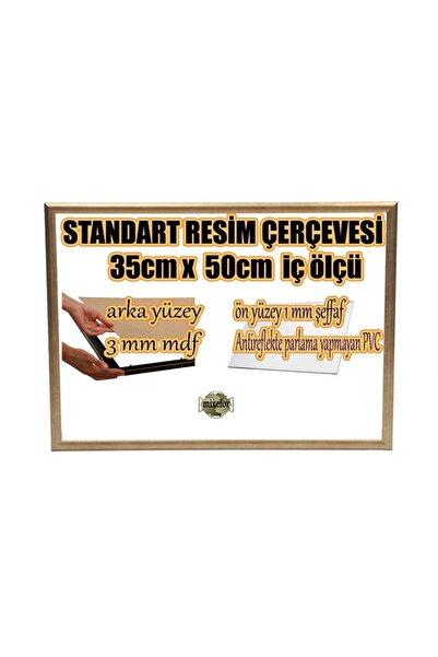 mixefor Standart Boş Çerçeve - 35cm X 50cm Iç Ölçü -eskitme Gümüş -arka Yüzey Mdf- 1mm Antireflekte Mat Pvc