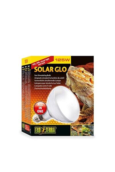 Exo Terra Exo-terra Solar Glo Sürüngen Lambası