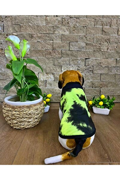 Buddy Store Kedi Köpek Kıyafeti Organik Kumaş Model Kuzey Işıkları