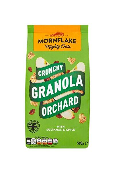 Mornflake Meyveli Granola 500 Gr