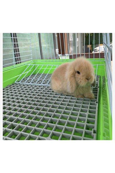 A.C.E.K PLASTİK 50x50 Ölçü Plastik Tavşan Kafesi Taban Izgarası