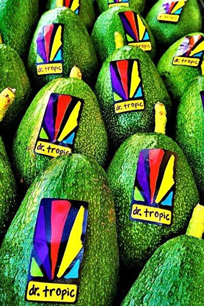 dr. tropic Avokado Ham 5 Kg