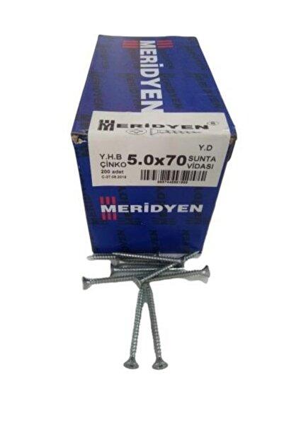 Meridyen Sunta Vidası 5.0x70mm - 200 Adet