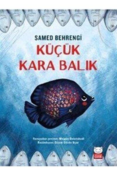 Kırmızı Kedi Yayınevi Küçük Kara Balık