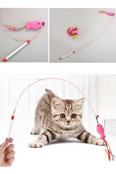 Lion Balıklı Kedi Oyun Oltası