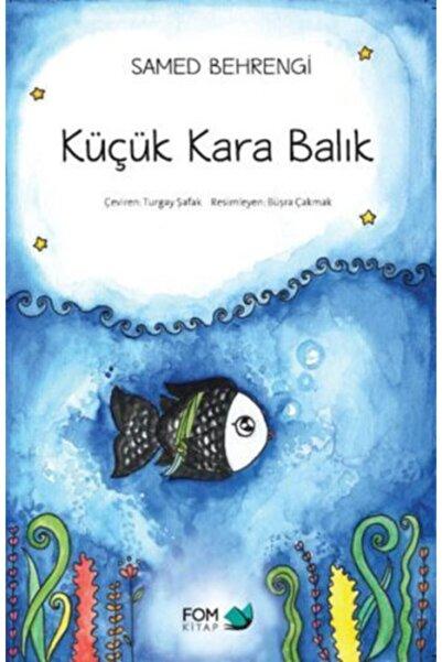 3D Yayınları Küçük Kara Balık