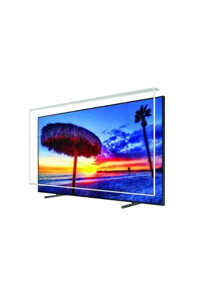 OFGLASS Sony 65 Inç Uyumlu Tv Ekran Koruyucu 165 Ekran
