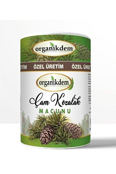 Hekimhan Organikdem Çam Kozalağı Macunu 240 gr