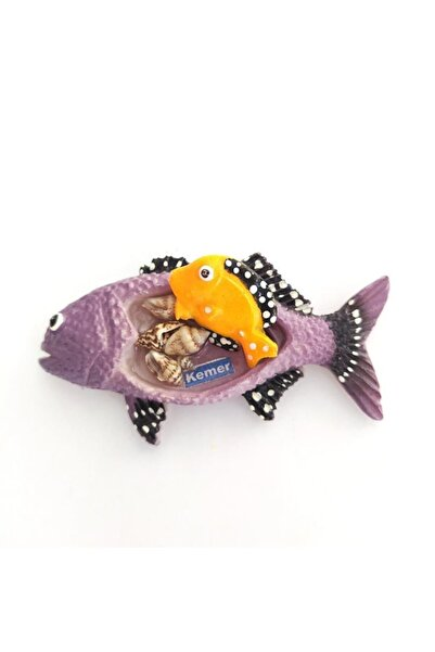 Hd Marketim Balık Deniz Yıldızı Kemer Yazılı Deniz Kabuklu Buzdolabı Süsü Magnet 9387