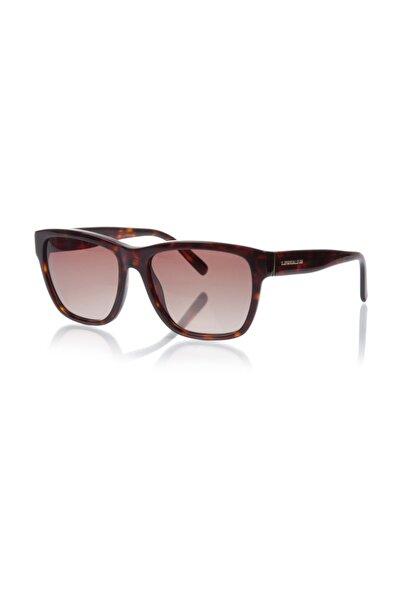Karl Lagerfeld Unisex Kare Güneş Gözlüğü Kl 810 013