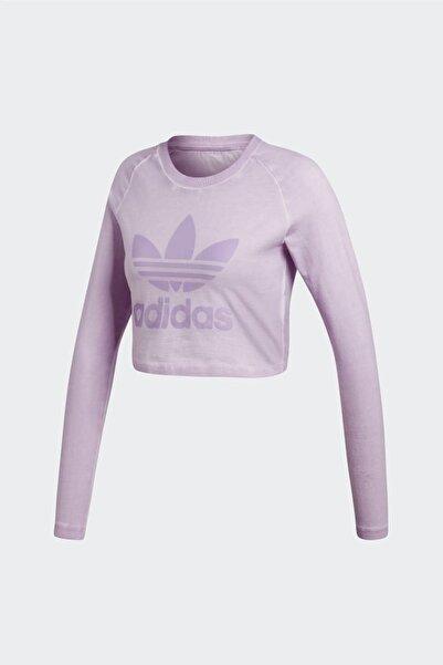 Kadın Originals T-shirt - Crop Longsleeve - DU8500