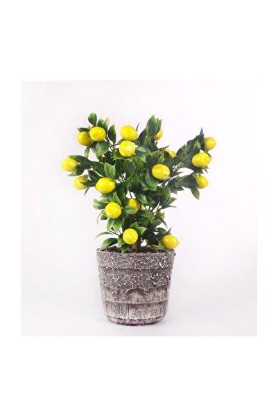 Nettenevime Limon Ağacı Seramik Saksıda Yapay Çiçek