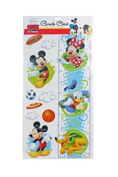 Dolphin Mickey Mouse Ve Arkadaşları Boy Cetveli