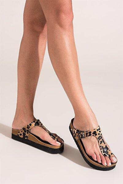 Fox Shoes Leopar Kadın Terlik