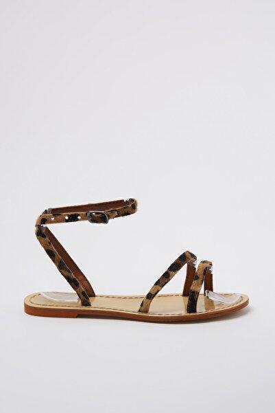 TRENDYOLMİLLA Kahverengi Kadın Sandalet TAKSS20SD0054
