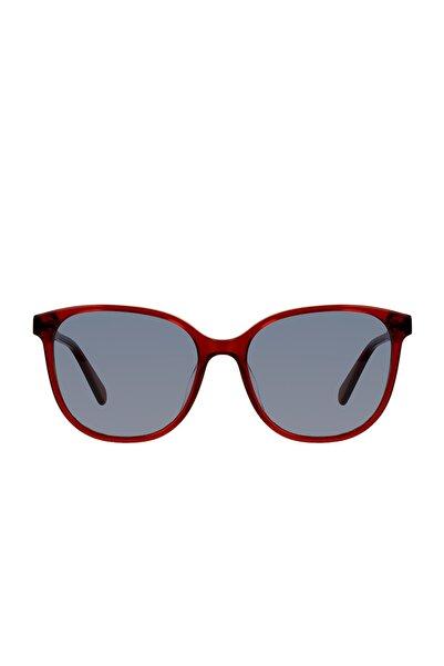 Calvin Klein Kadın Güneş Gözlüğü GU035056