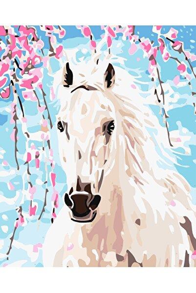 Palmiye Hobi Sanat Sayılarla Boyama Tablo Seti Kanvas Fırça Boya Dahil 40x50 CM - Beyaz At