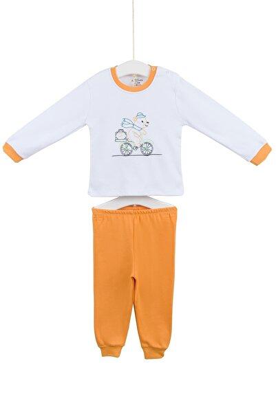 Aziz Bebe Erkek Çocuk Pijama Takımı 3-6 Yaş AZZ009438