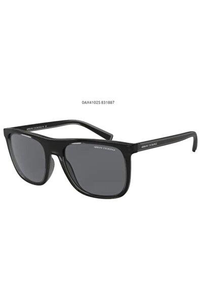 Armani Exchange Güneş Gözlüğü Ax 4102s 831887