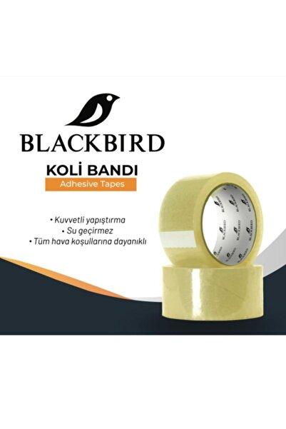 BLACKBIRD Şeffaf Koli Bandı Süper Kalite Koli Bandı Blackbird