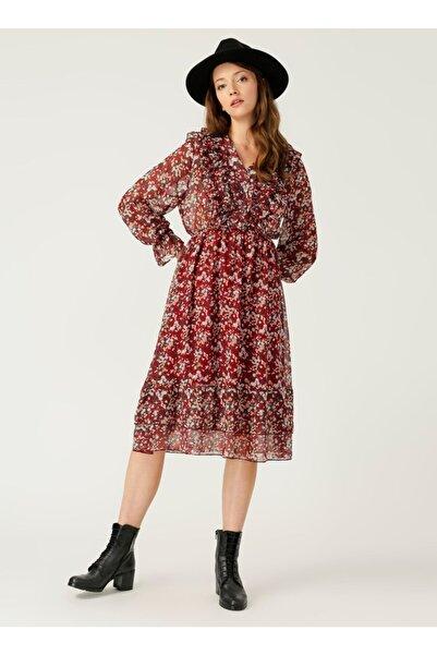 Quzu Kadın Bordo Elbise