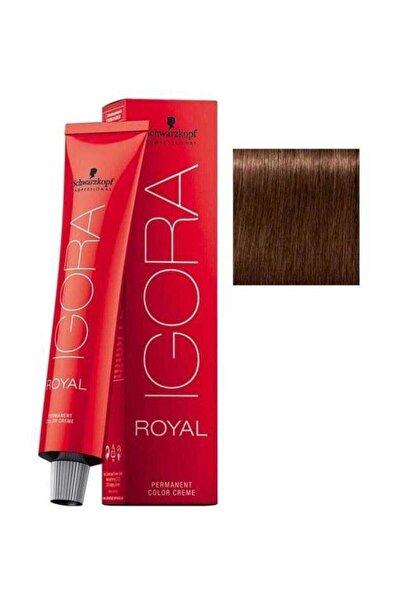 SCHWARZKOPF HAIR MASCARA Kestane Kızıl Koyu Kumral Igora Royal Saç Boyası 6-68 60 ml 4045787207040