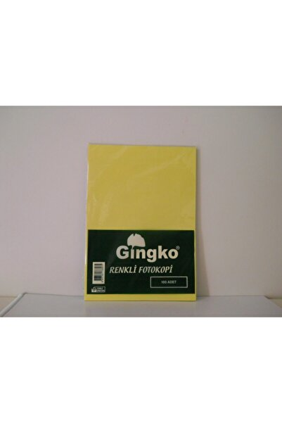 Gingko Renkli A4 Fotokopi Kağıdı 80 gr 100 Adet